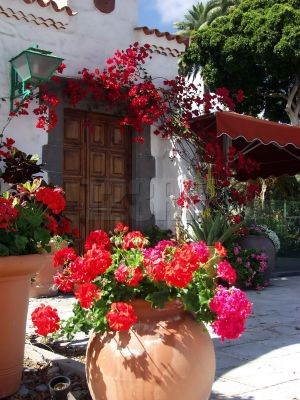 "(Photo Credit: Photographer, Ramon Grosso Dolarea From Spain ""Restaurant door with flowers, restaurant door whit red flowers, 576850)"
